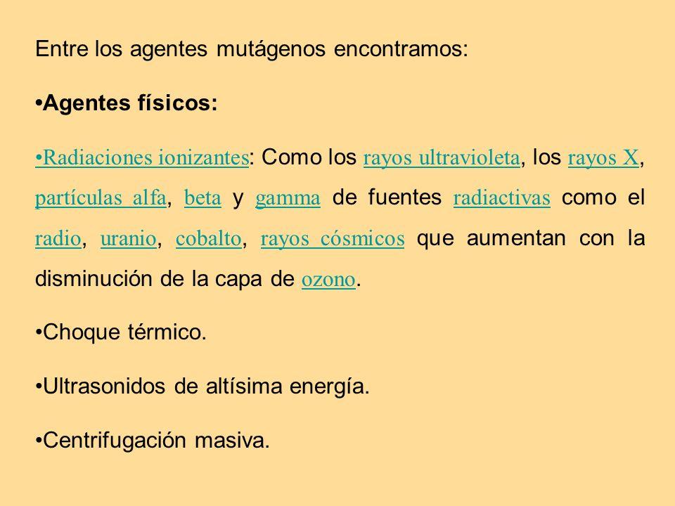 Entre los agentes mutágenos encontramos: