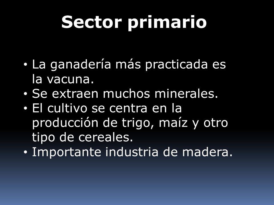 Sector primario La ganadería más practicada es la vacuna.