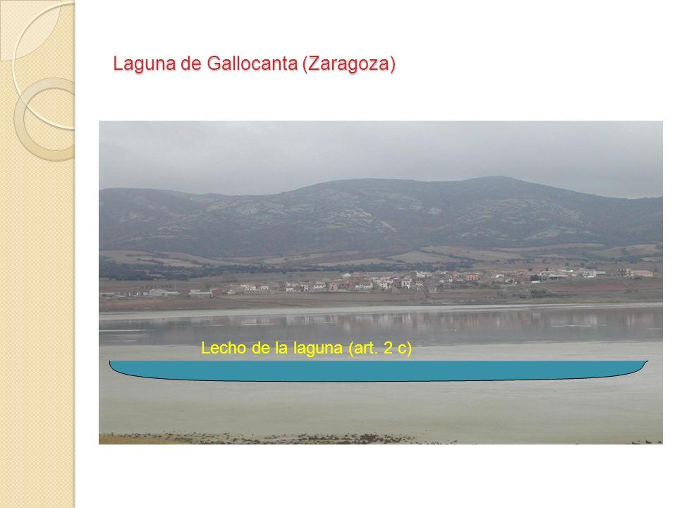 Laguna de Gallocanta (Zaragoza)
