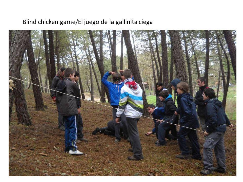 Blind chicken game/El juego de la gallinita ciega