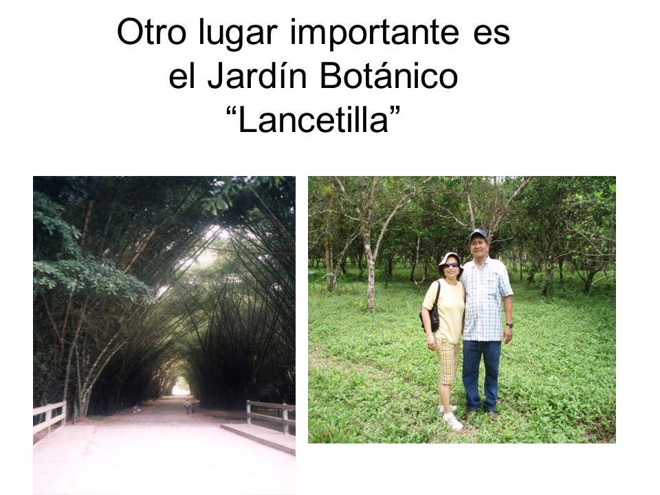 Otro lugar importante es el Jardín Botánico Lancetilla