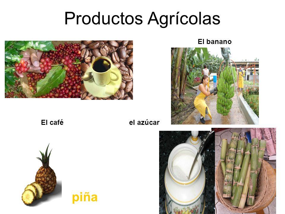 Productos Agrícolas El banano El café el azúcar piña