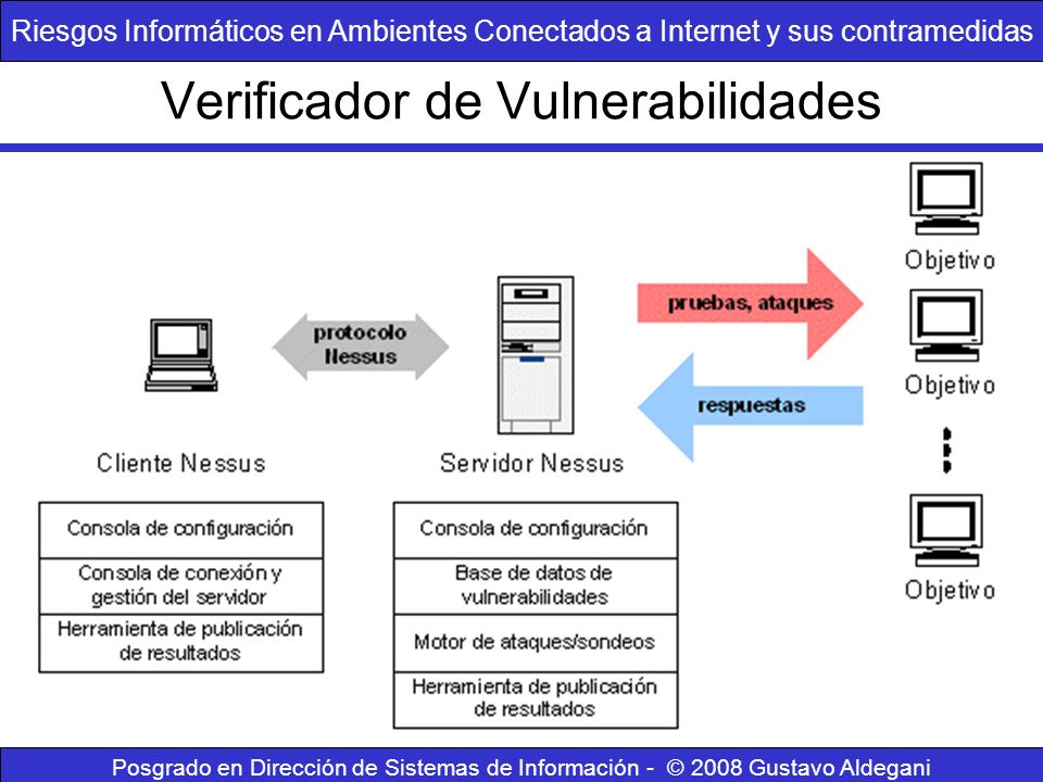 Verificador de Vulnerabilidades