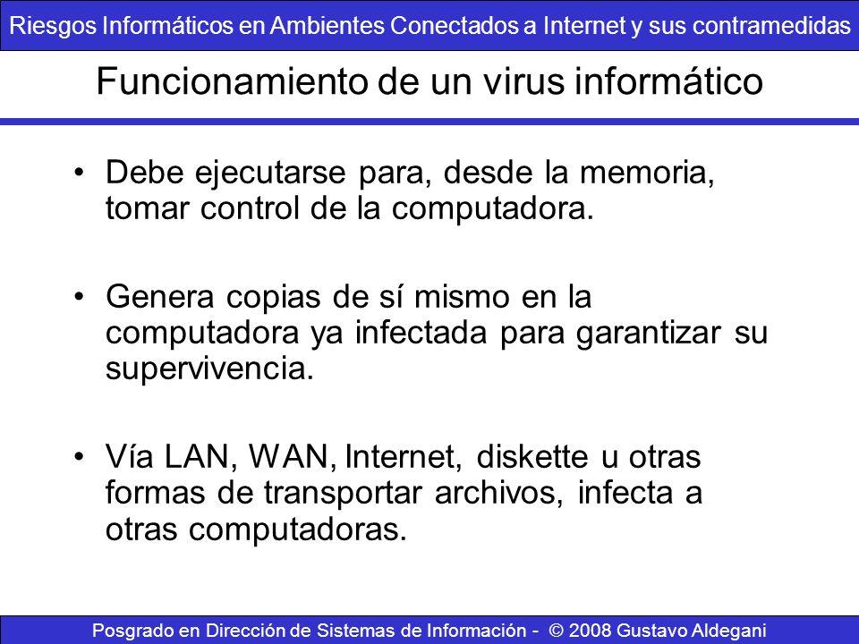 Funcionamiento de un virus informático