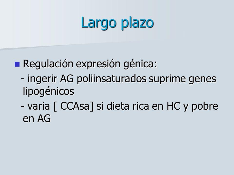 Largo plazo Regulación expresión génica: