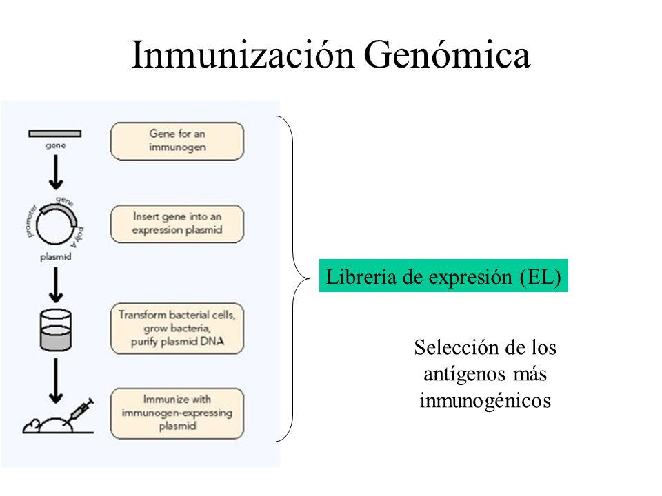 Inmunización Genómica