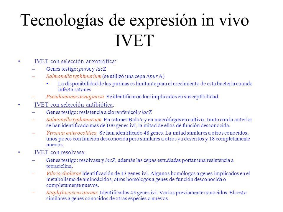 Tecnologías de expresión in vivo IVET