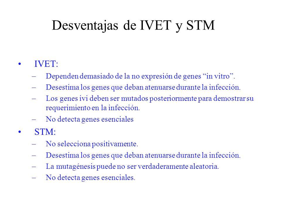 Desventajas de IVET y STM