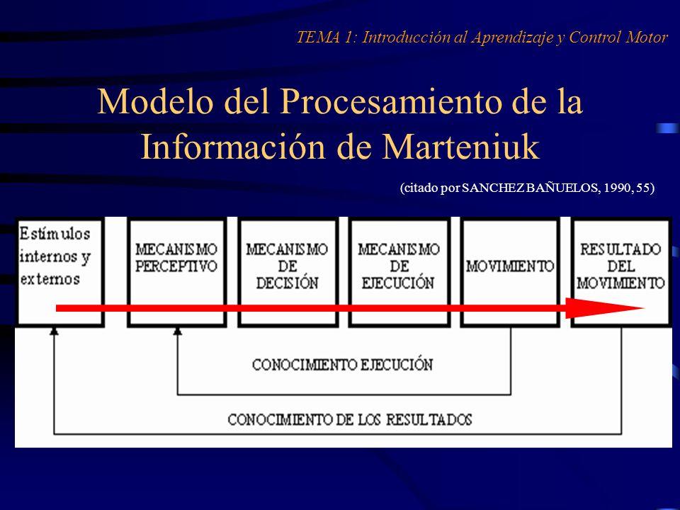 Modelo del Procesamiento de la Información de Marteniuk