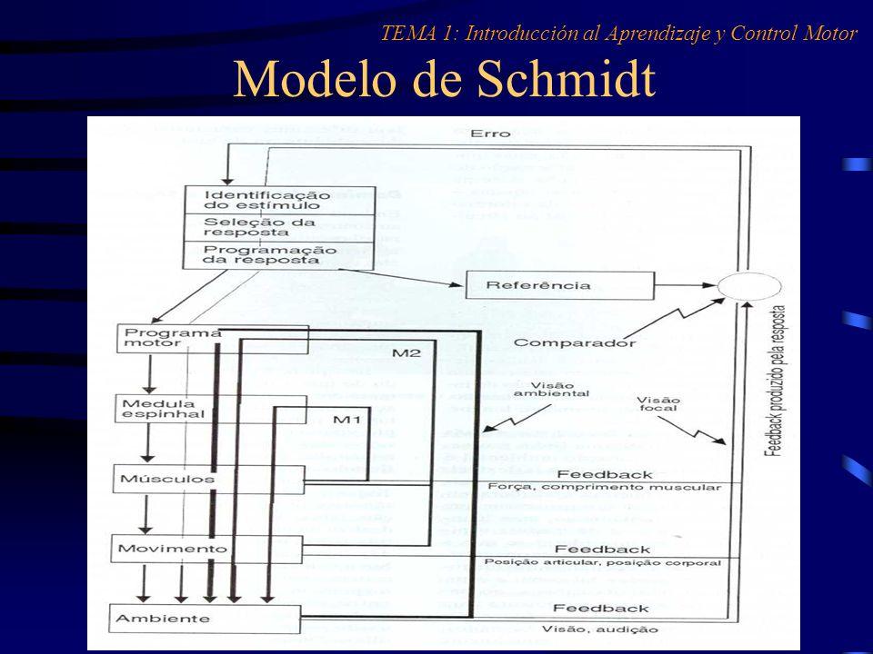 TEMA 1: Introducción al Aprendizaje y Control Motor