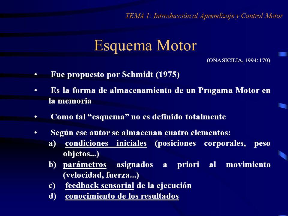 Esquema Motor Fue propuesto por Schmidt (1975)