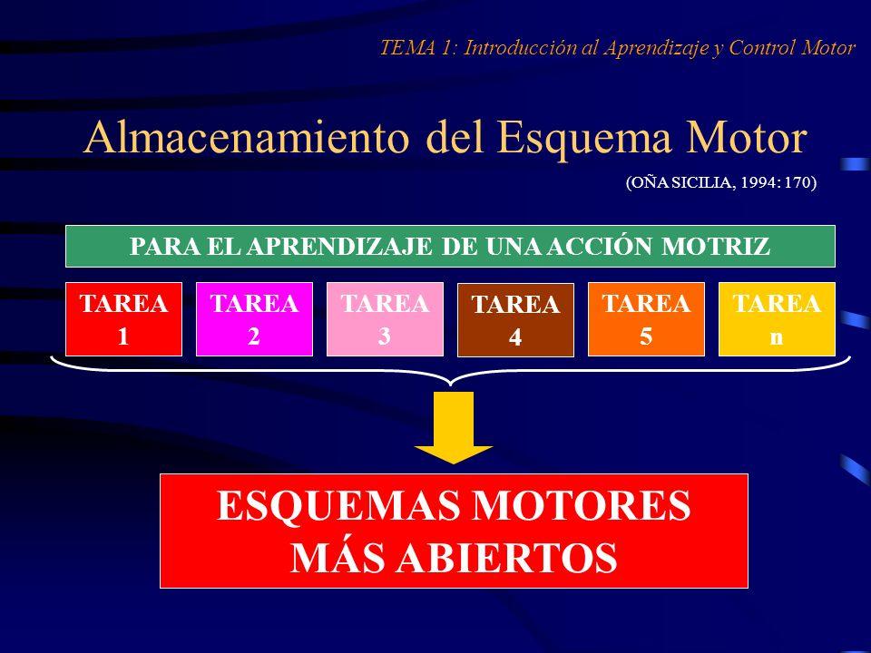 Almacenamiento del Esquema Motor