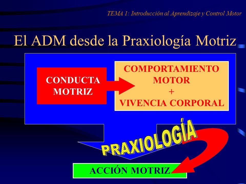 El ADM desde la Praxiología Motriz