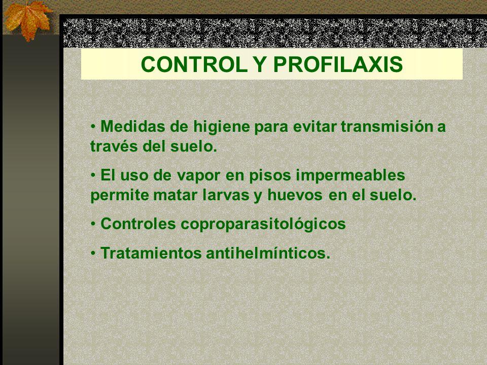 CONTROL Y PROFILAXIS Medidas de higiene para evitar transmisión a través del suelo.