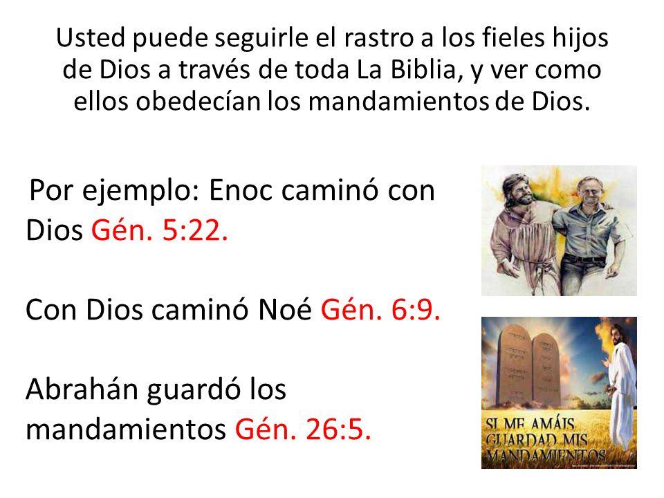 Con Dios caminó Noé Gén. 6:9.