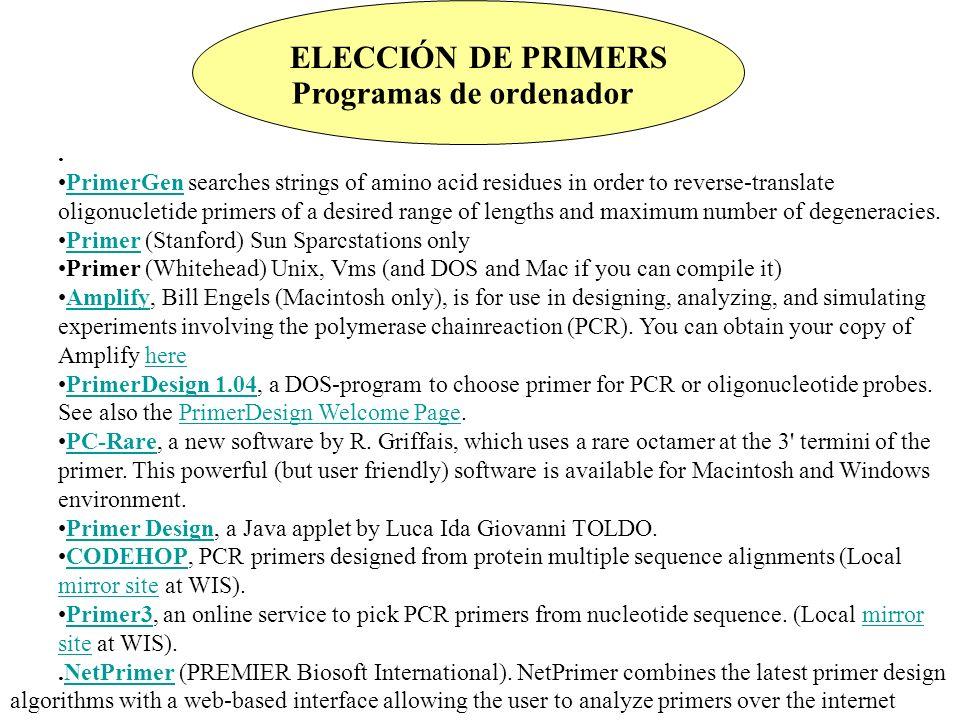 Programas de ordenador