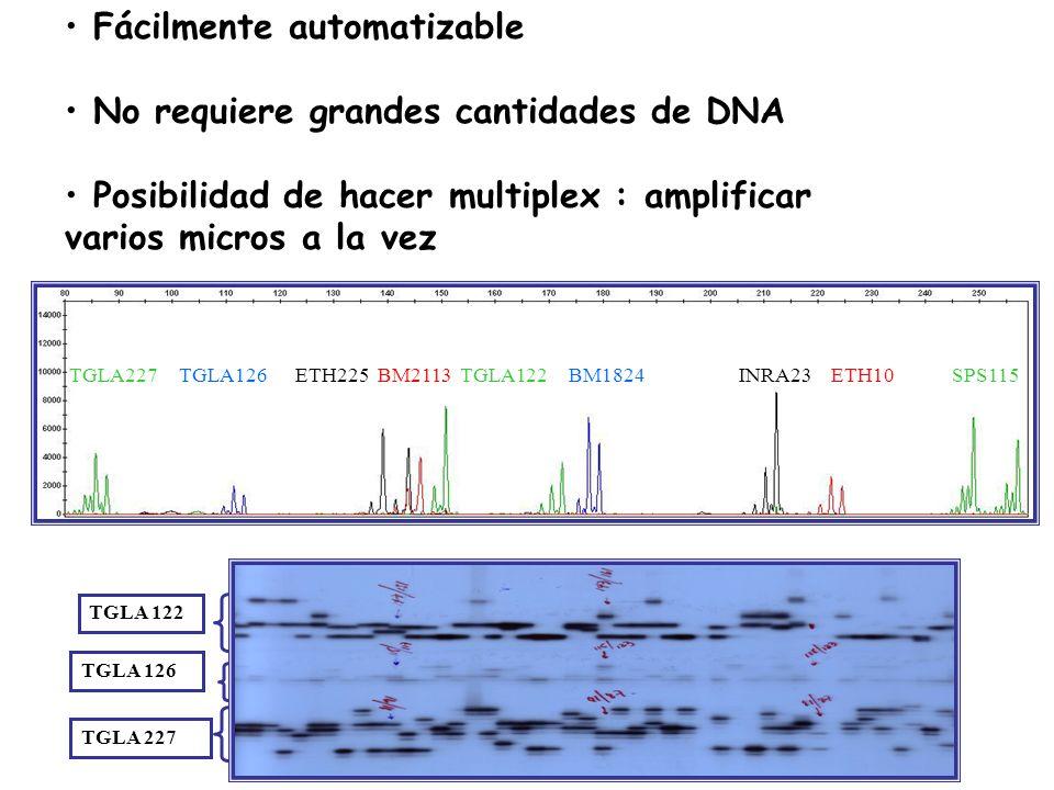 Fácilmente automatizable No requiere grandes cantidades de DNA