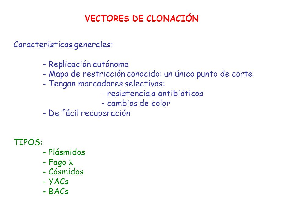 VECTORES DE CLONACIÓNCaracterísticas generales: - Replicación autónoma. - Mapa de restricción conocido: un único punto de corte.