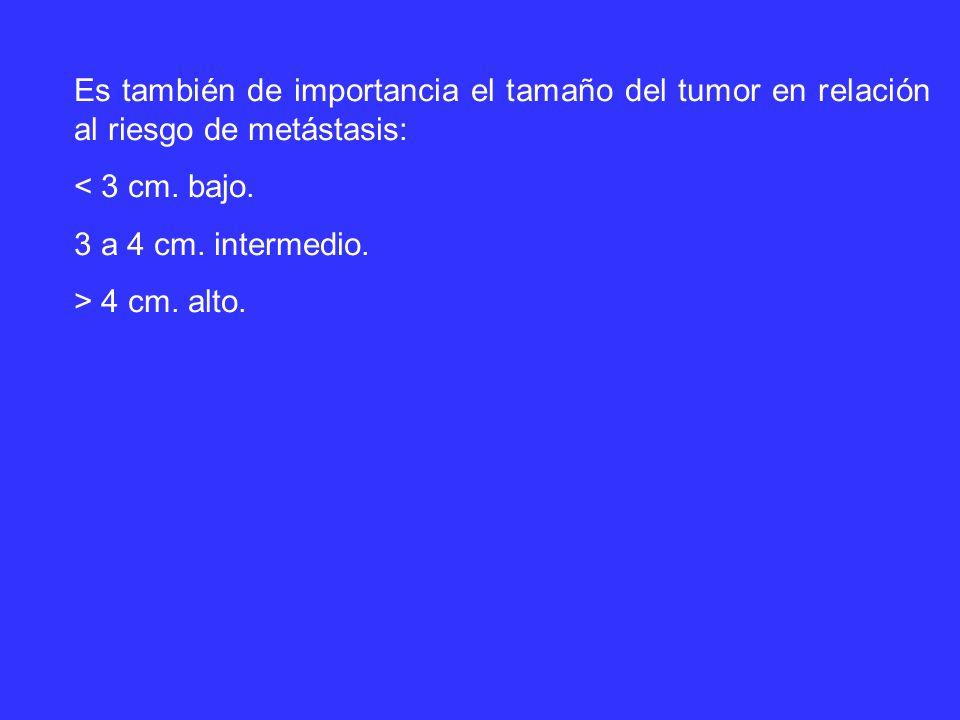 Es también de importancia el tamaño del tumor en relación al riesgo de metástasis: