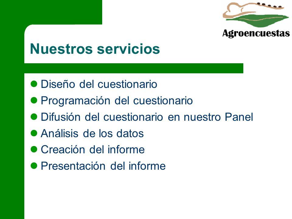 Nuestros servicios Diseño del cuestionario