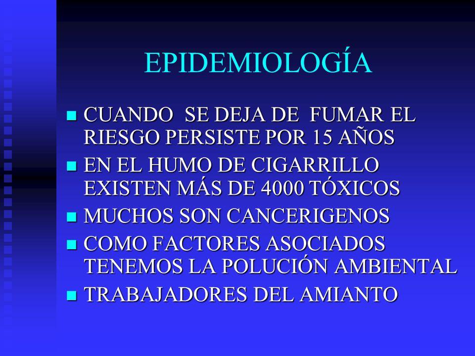 EPIDEMIOLOGÍA CUANDO SE DEJA DE FUMAR EL RIESGO PERSISTE POR 15 AÑOS
