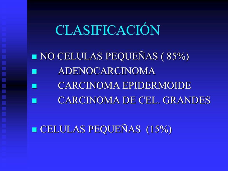CLASIFICACIÓN NO CELULAS PEQUEÑAS ( 85%) ADENOCARCINOMA