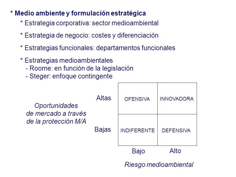 * Medio ambiente y formulación estratégica