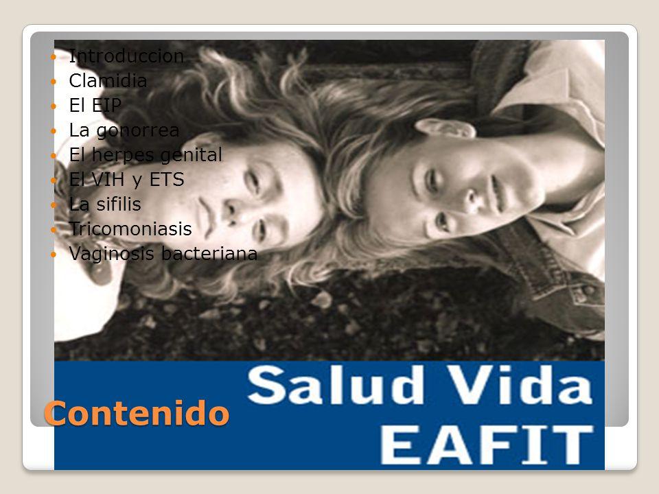 Contenido Introduccion Clamidia El EIP La gonorrea El herpes genital