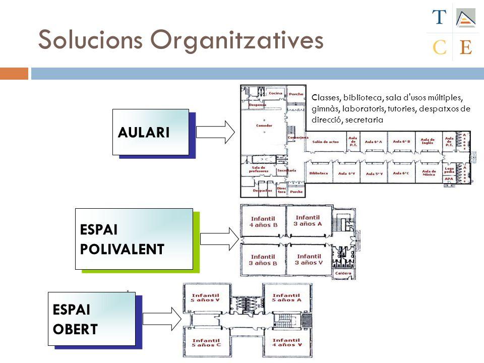 Solucions Organitzatives