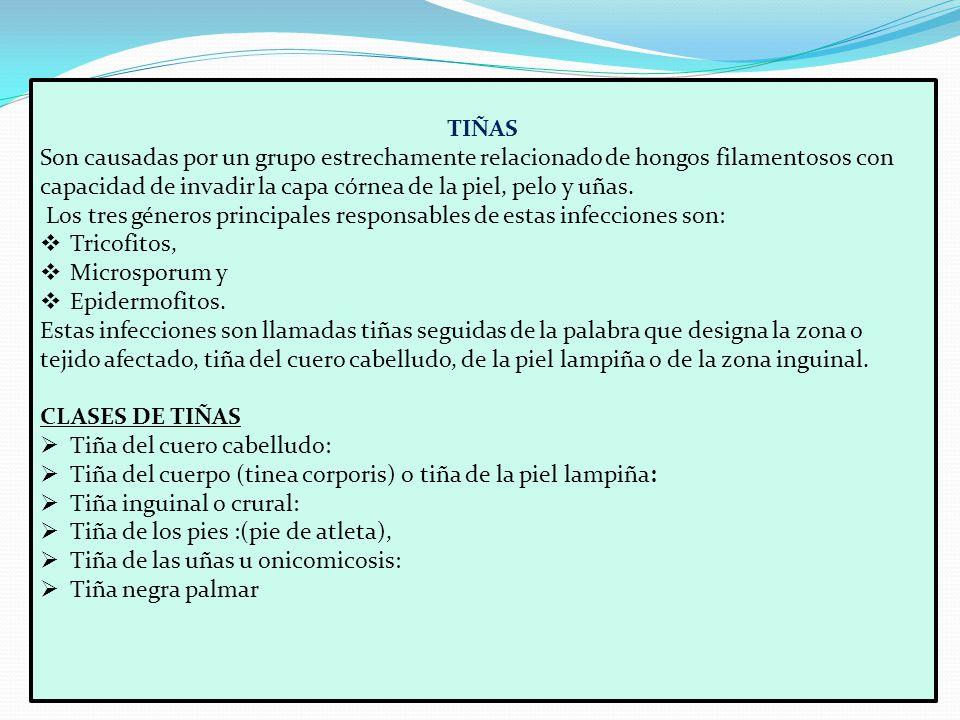 INTRODUCCION. MEDICAMENTOS 0TC PARA EL TRATAMIENTO DE ENFERMEDADES ...