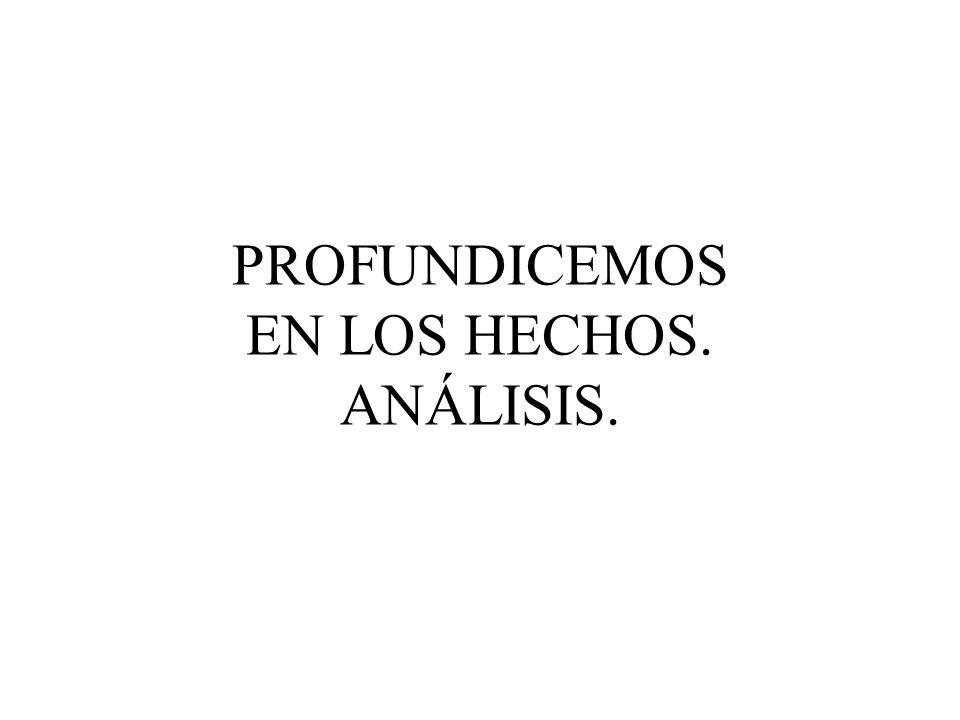 PROFUNDICEMOS EN LOS HECHOS. ANÁLISIS.