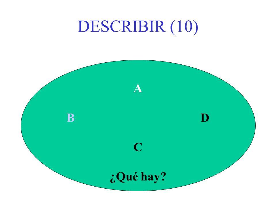 DESCRIBIR (10) A B D C ¿Qué hay
