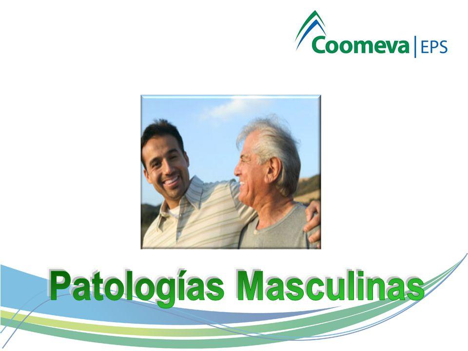 Patologías Masculinas