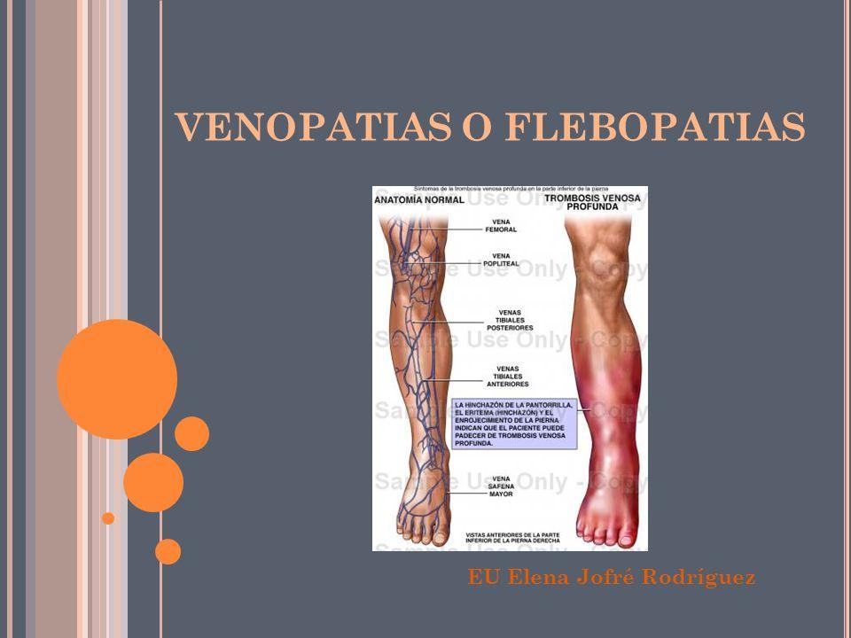 Lujo Venosa Profunda De La Pierna Anatomía Imagen - Anatomía de Las ...
