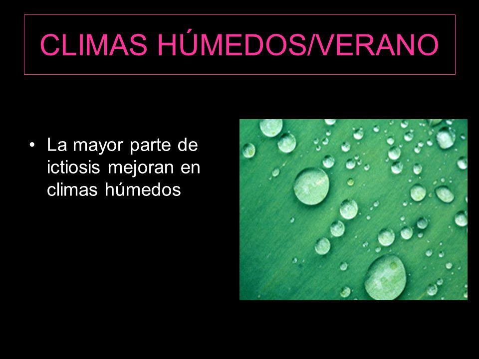 CLIMAS HÚMEDOS/VERANO