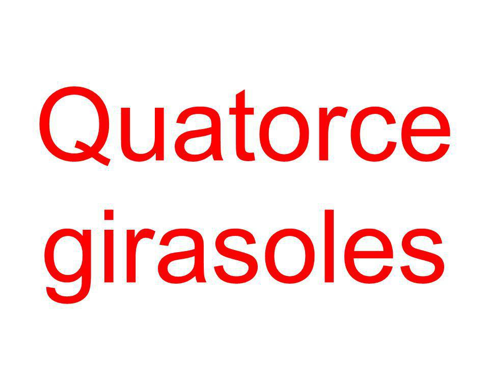 Quatorce girasoles