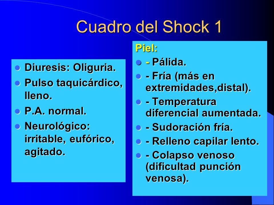 Cuadro del Shock 1 Piel: - Pálida.