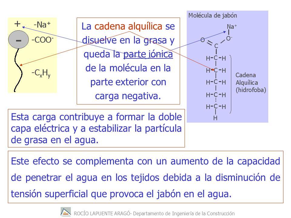 La cadena alquílica se disuelve en la grasa y queda la parte iónica de la molécula en la parte exterior con carga negativa.