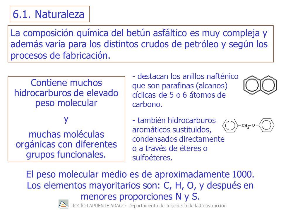 6.1. Naturaleza