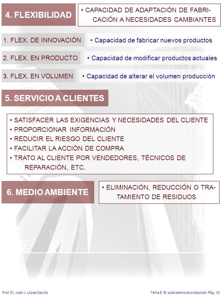 4. FLEXIBILIDAD 5. SERVICIO A CLIENTES 6. MEDIO AMBIENTE