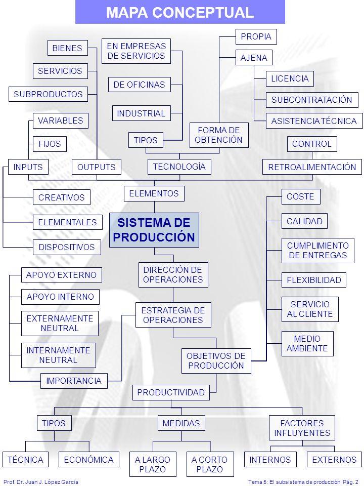 MAPA CONCEPTUAL SISTEMA DE PRODUCCIÓN PROPIA BIENES EN EMPRESAS