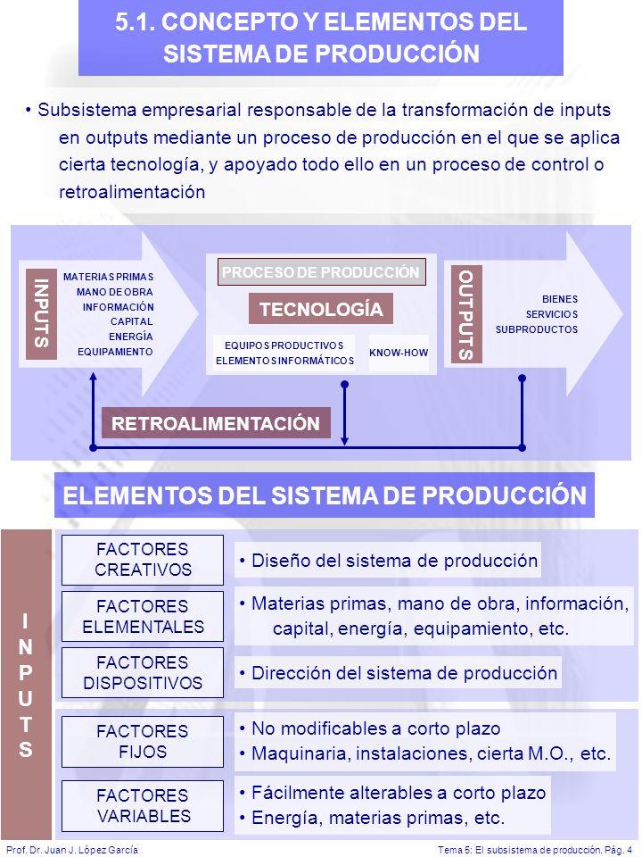 5.1. CONCEPTO Y ELEMENTOS DEL SISTEMA DE PRODUCCIÓN