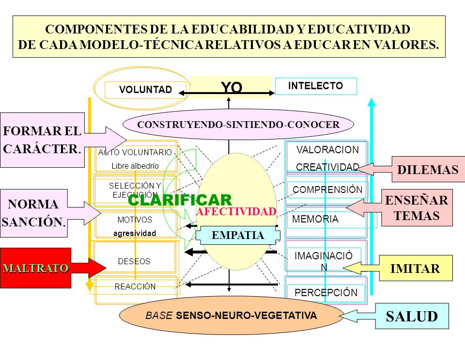 YO CLARIFICAR SALUD COMPONENTES DE LA EDUCABILIDAD Y EDUCATIVIDAD