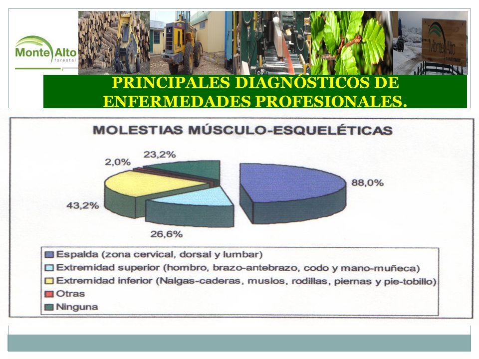 PRINCIPALES DIAGNÓSTICOS DE ENFERMEDADES PROFESIONALES.