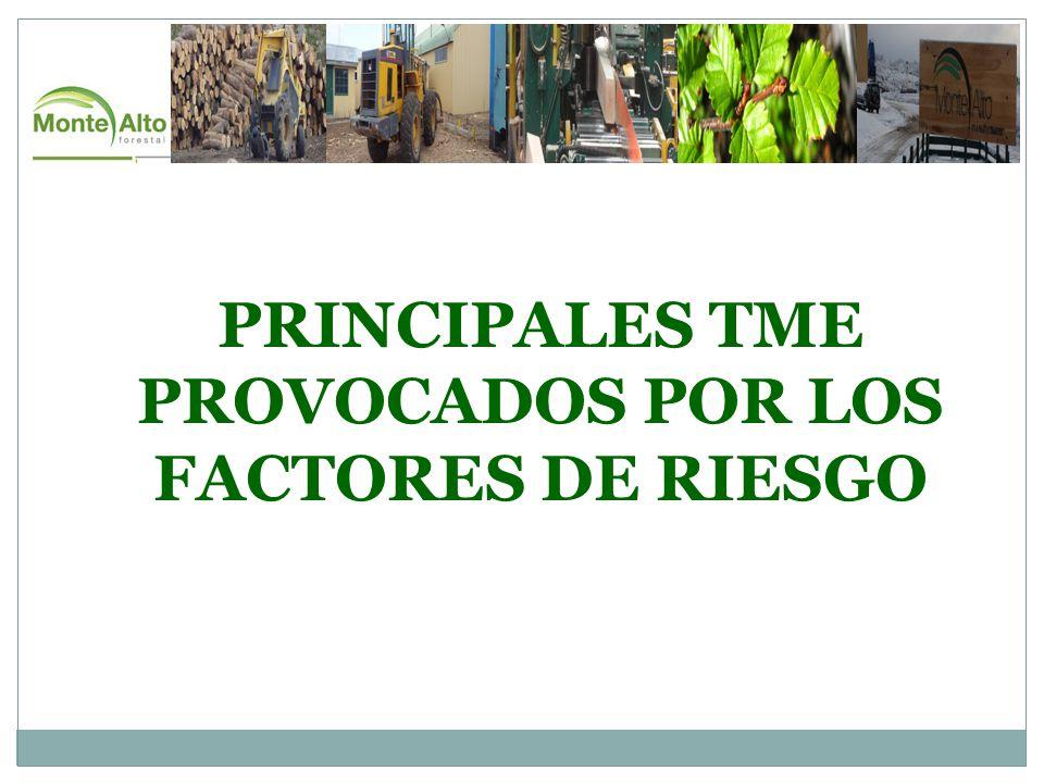 PRINCIPALES TME PROVOCADOS POR LOS FACTORES DE RIESGO