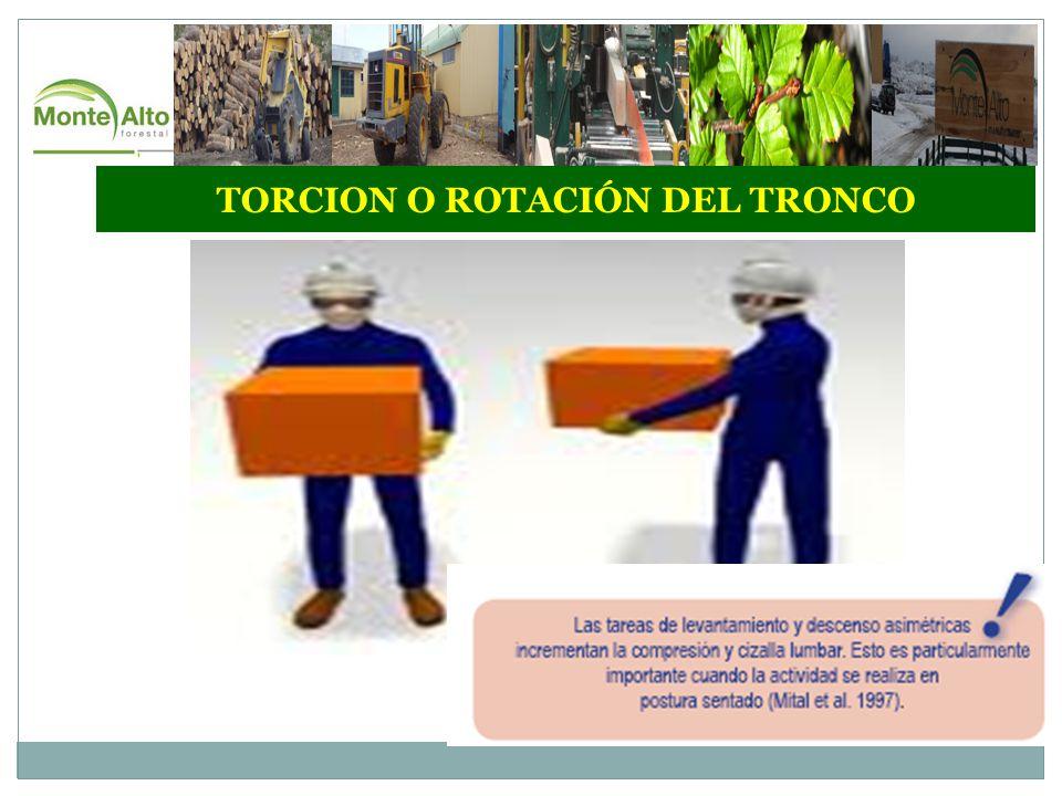 TORCION O ROTACIÓN DEL TRONCO
