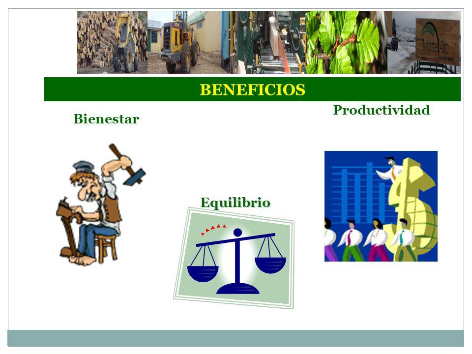 BENEFICIOS Productividad Bienestar Equilibrio