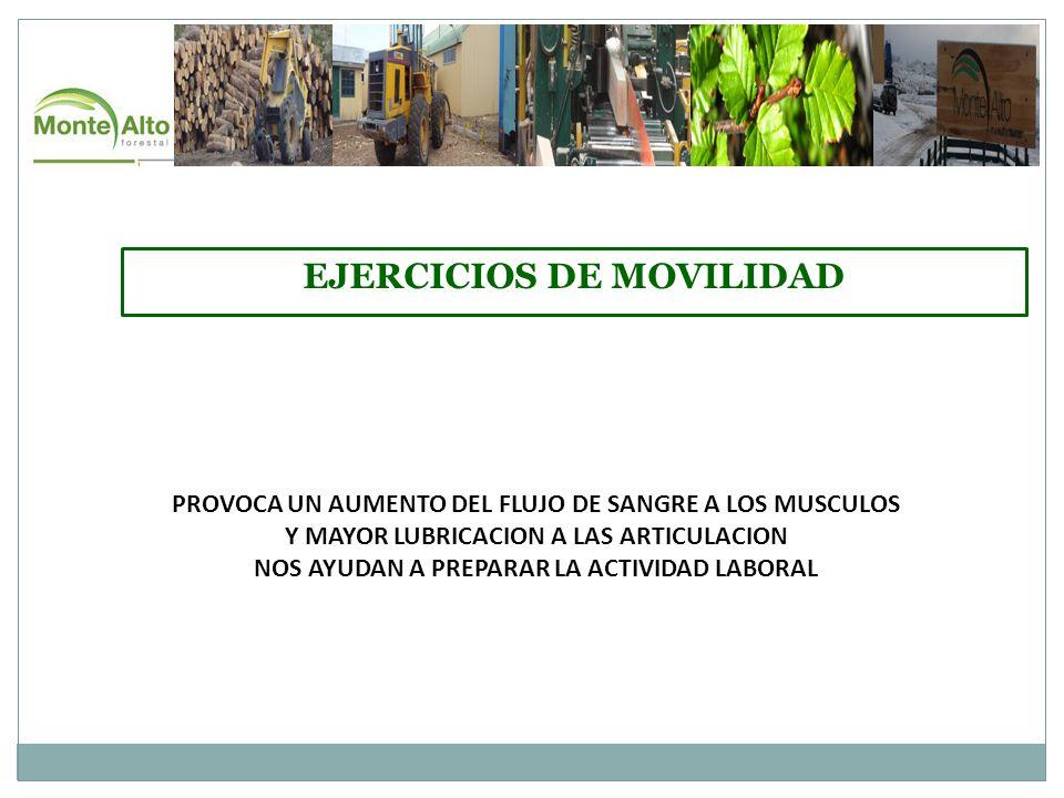 EJERCICIOS DE MOVILIDAD