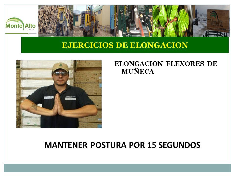 EJERCICIOS DE ELONGACION MANTENER POSTURA POR 15 SEGUNDOS