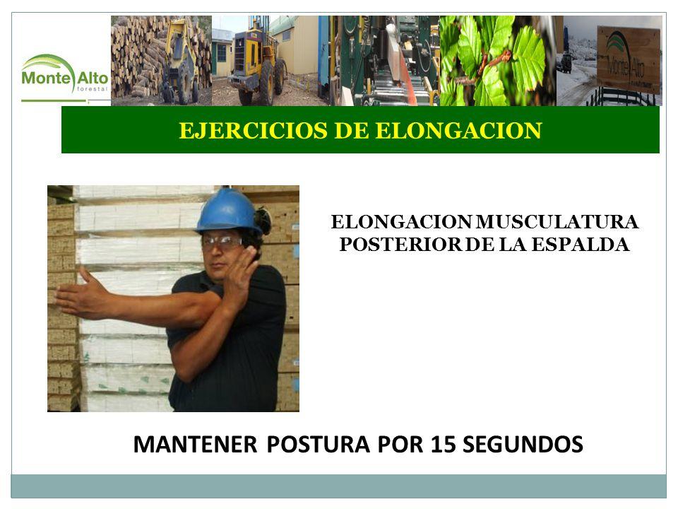 MANTENER POSTURA POR 15 SEGUNDOS